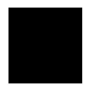 foodicon-karotte-300x300.png
