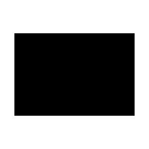 foodicon-kiwi-300x300.png